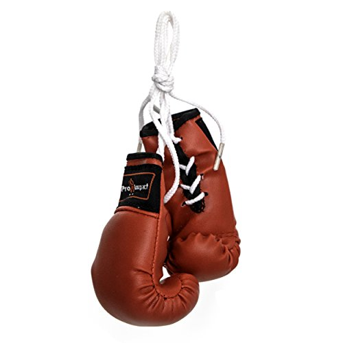 AMERICA BOXING MINI BOXING GLOVES AND KEY CHAIN FOR THE REAR VIEW MIRROR